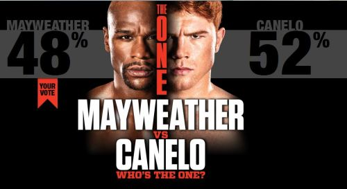 mayweather-vs-canelo-voting-graphic